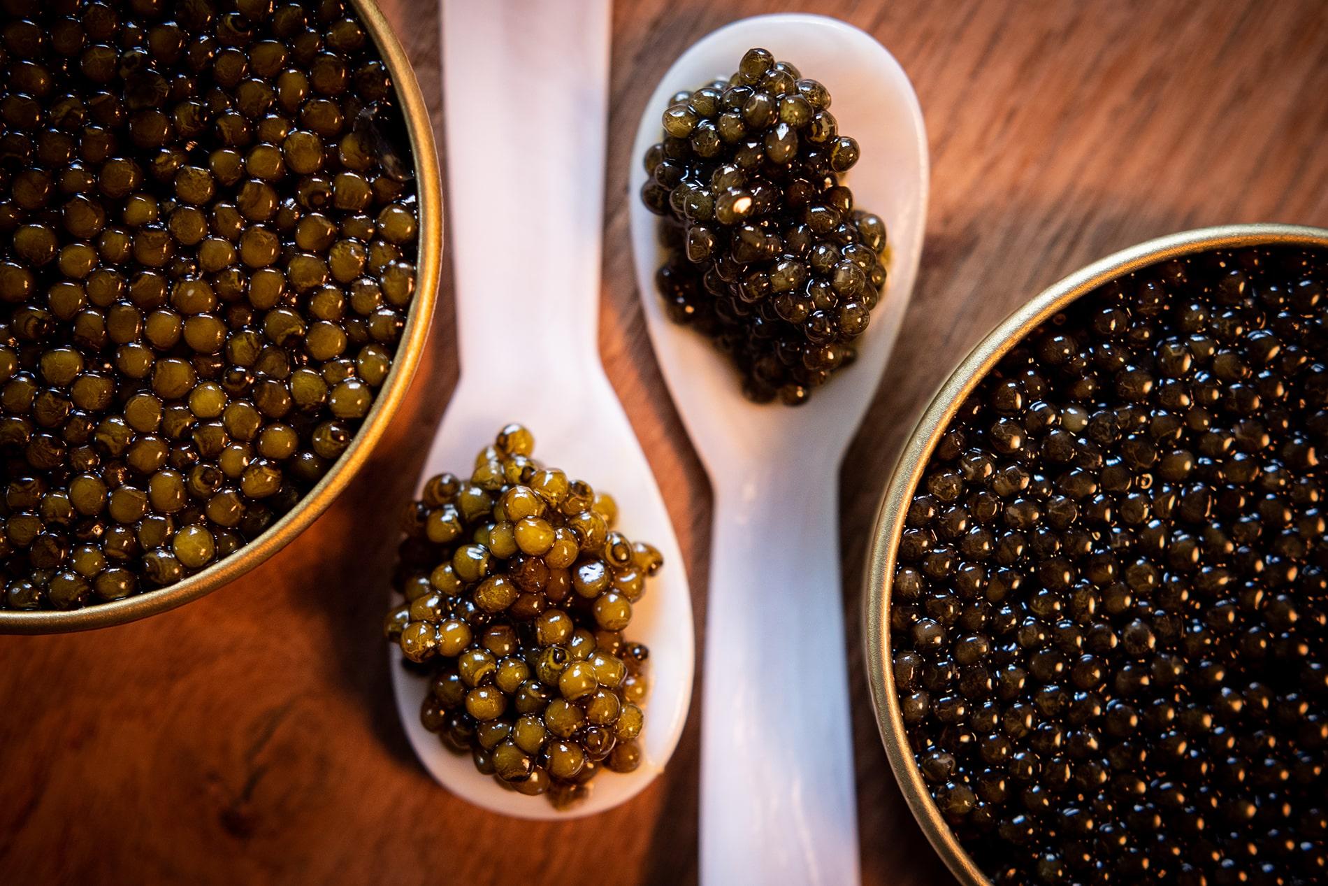 Meilleures façons de manger du caviar